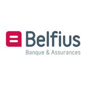 Logo de Belfius, partenaire de l'Accueil des Tout-Petits